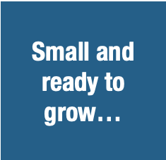 SMALL BUSINESS AND READY TO GROW